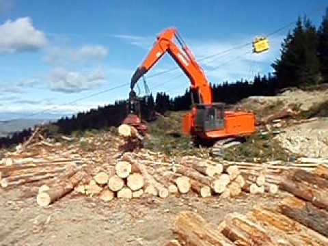 logging waimate forest nz
