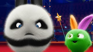 Sunny Bunnies | Big boo the Panda | COMPILATION | Videos For Kids