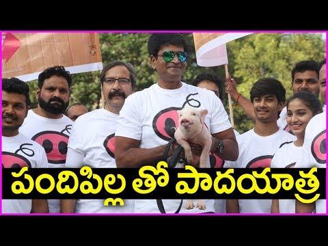 Ravi Babu's Adhugo Movie Promotions - Padayatra With Piglet Bunty   Rose Telugu Movies