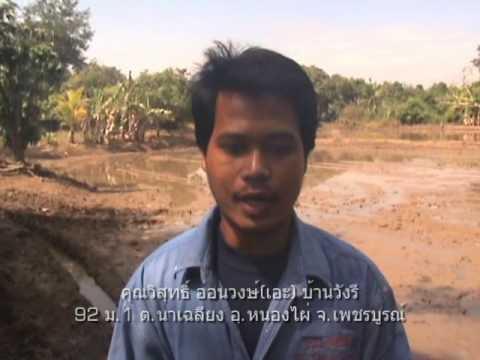 การทำนาข้าวตอน2 Rice farming