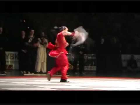 ART OF WUSHU
