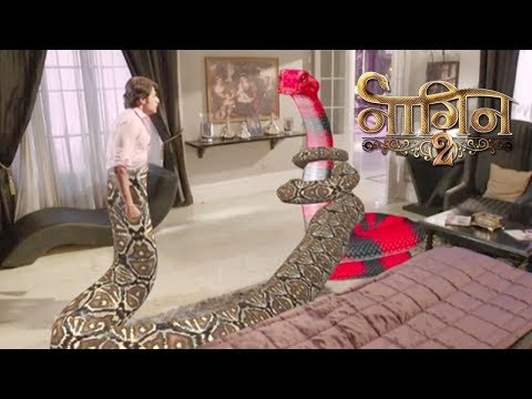 Naagin 2- 19th November 2017 | Today Latest News Update | Colors Tv Naagin Season 3 News 2017 thumbnail