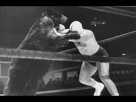 Top: Las 6 peleas más grotescas de la Deep Web VEGA RING
