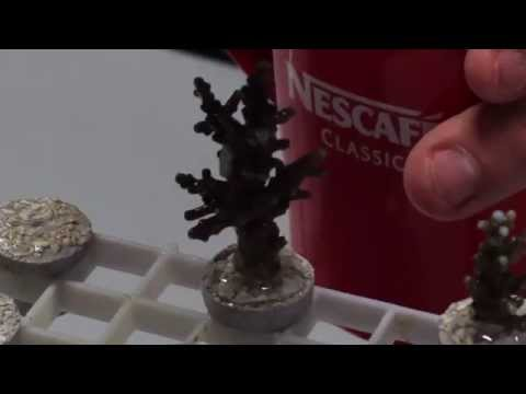 HOW TO: Frag!!! Coral Propagation