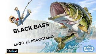 Pesca spinning al black bass Lago di Bracciano