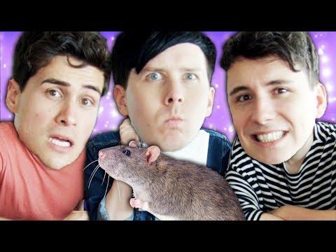 Anthony, Dan Or A RAT?