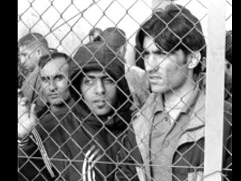 Greek Immigration