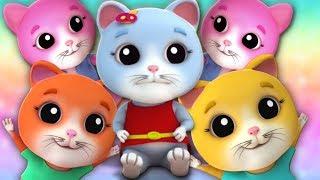 lima anak kucing kecil | kucing lagu untuk anak-anak | Five Little Kittens