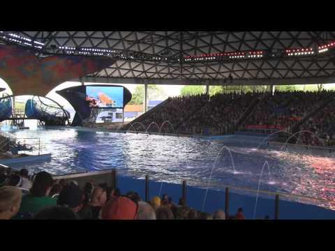 One Ocean at SeaWorld San Antonio - Full HD Show