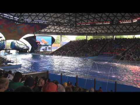 One Ocean at SeaWorld San Antonio - Full HD Show