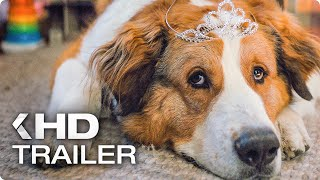 A DOG'S JOURNEY All Clips & Trailers (2019)