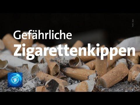 Gefahr für die Umwelt: Zigarettenstummel