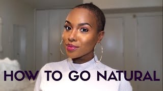 How To Go Natural   Things EVERY Natural Should Know!   Nia Hope