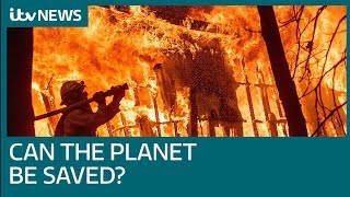 David Wallace-Wells: 'Why climate change is gravely worse than feared' | ITV News