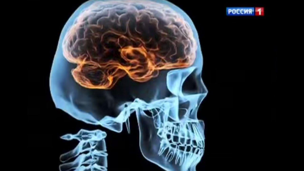 Как вести себя при сотрясении мозга в домашних условиях
