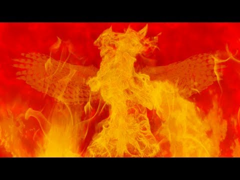 The Phoenix - Fall Out Boy - (fan lyric video)