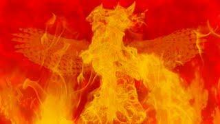 Watch Fall Out Boy The Phoenix video