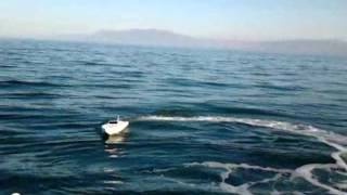 homemade rc speedboat 1m brushless 1900kv