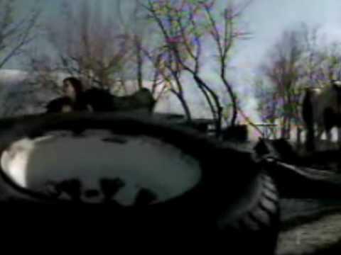 Evanescence -  Missing