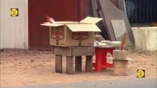 Bình Dương, phát hiện thi thể người đàn treo cổ trên đường Nguyễn Thị Tươi, phường Tân Bình, TX Dĩ A