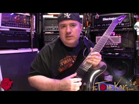 IBANEZ IRON LABEL S SERIES 7 STRING - Demo & Review!