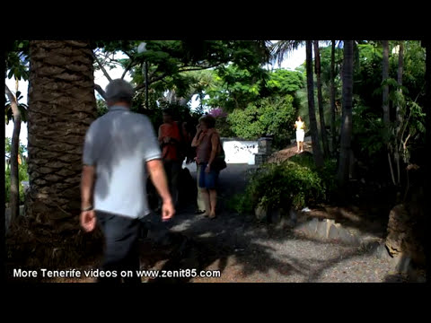 Video of El Sauzal Tenerife