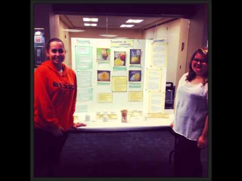 Science Fair, Moraine Valley Community College Library