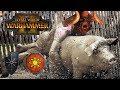 Chaos & Lizardmen | PAPA KHOLEK & SOME LIZARDS   Total War Warhammer 2