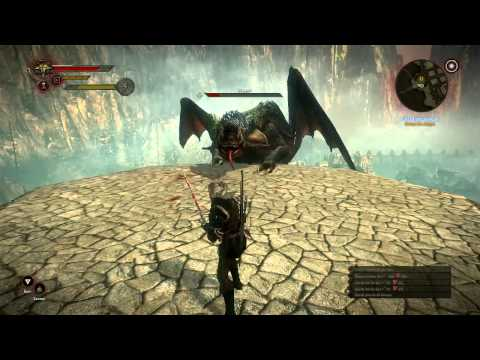 The Witcher 2 Dragon Boss Fight
