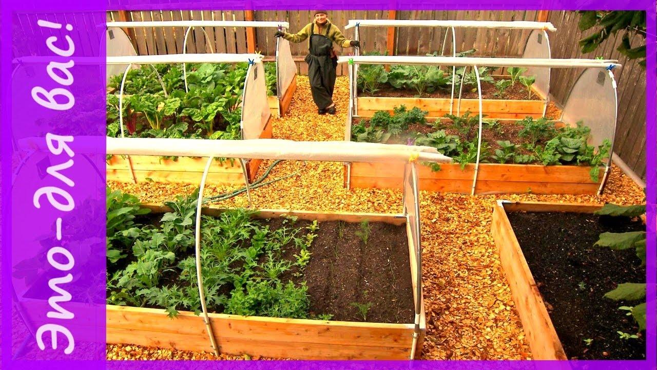 Посадить сад своими руками 999