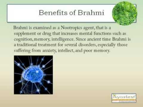 Health Benefits of Brahmi Capsules