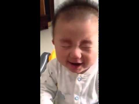 Vídeos graciosos de bebes