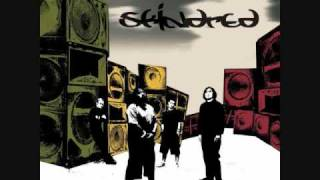 Watch Skindred Selector video