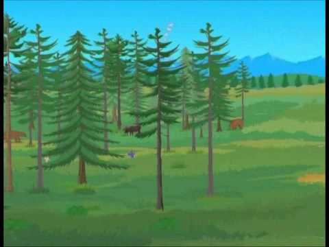 MOUNTAIN P1 | World Biomes | Biome Review | Geography Knowledge | Universe
