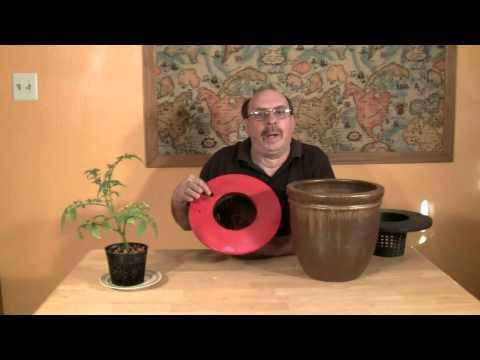 Hydroponics Make A Decorative Kratky Method System