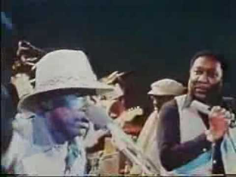 Muddy Waters, John Lee Hooker, Johnny Winter - I Just Wanna Make Love To You