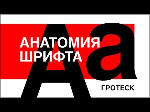 АНАТОМИЯ ШРИФТА. ГРОТЕСК. Искусство на грани