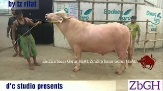 358 | Must Watch | Albino and Nili Ravi Buffalo | Exotic Collection | Sadeeq Agro | ZbGH 2018