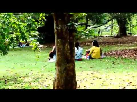 Filipino Women Love Botanical Garden Of Singapore video