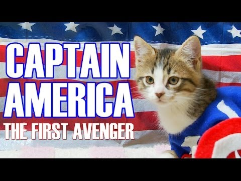 Captain America: The First Avenger (Cute Kitten Version)