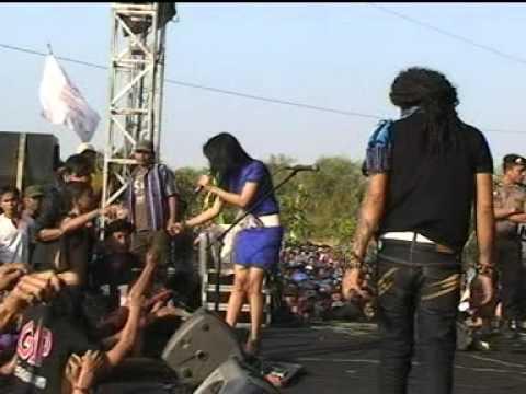 Perawan Kalimantan - Om.monata Plumbungan, Pati Merpati Vision video