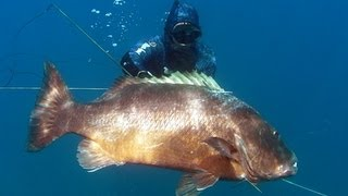 Onefish Spearfishing Episode 4 - Huge Wahoo and Cubera!