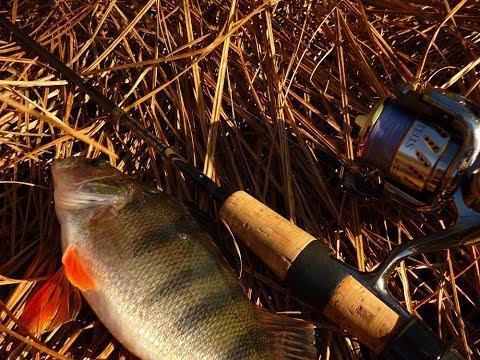 самые эффективные способы рыбалки