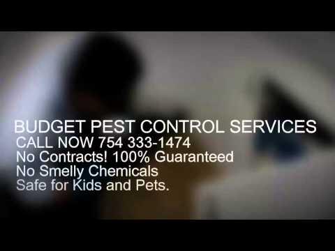Pest Control Miami   (754) 333-1464   Pest Control In Miami FL    33169   33055   33056