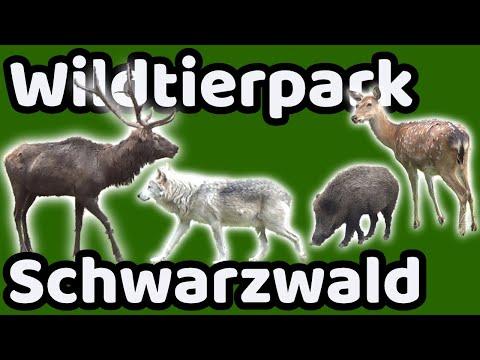 Besuch der Tiere im Wildpark Löffingen