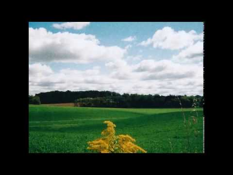 Mark Kozelek — Pretty Little Flowers (feat. Kath Bloom)