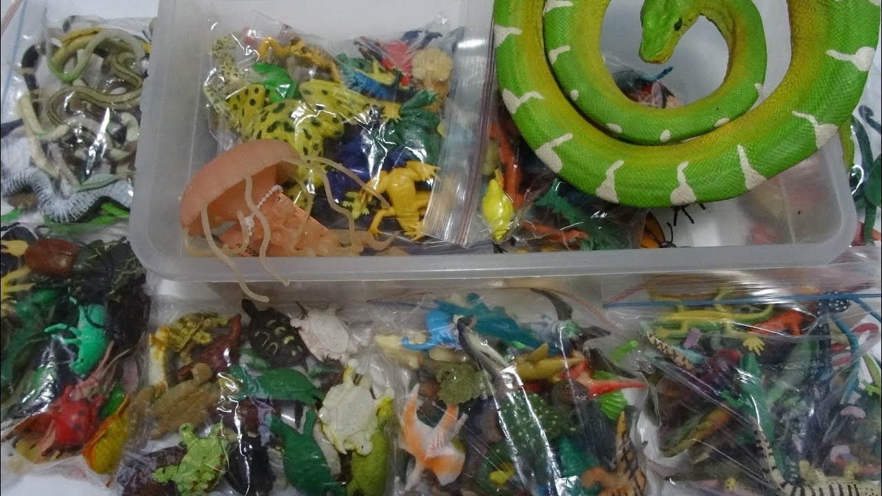 What's in the box: Small Plastic Animals! 100's of Reptiles, Fish ...