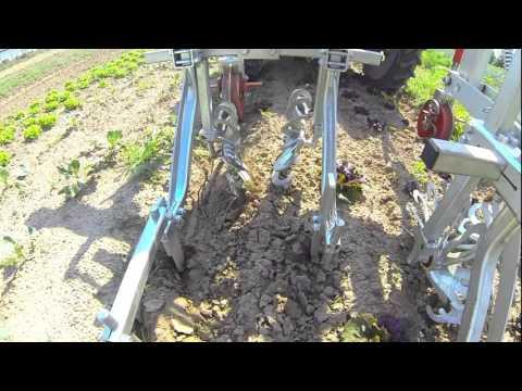 ROTOVERT OLIVER rotosark bineuse weeding machine hackmaschine sarcleuse weed control ORGANIC BIO