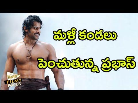 Prabhas Body Workout  For Bahubali 2 Movie...!!!