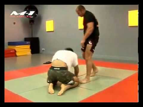 Fedor Emelianenko And Gregard Mousasi Training, MMA Image 1